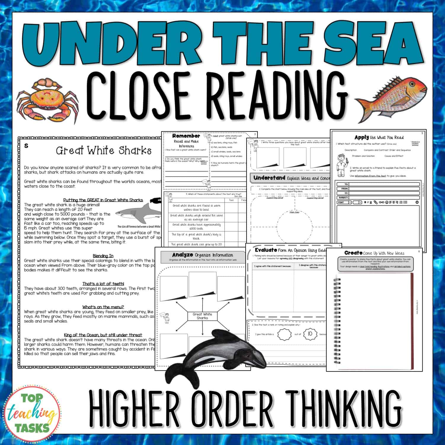 Under The Sea Reading Prehension Passages And Questions